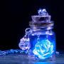 Кулон светящаяся роза в колбе
